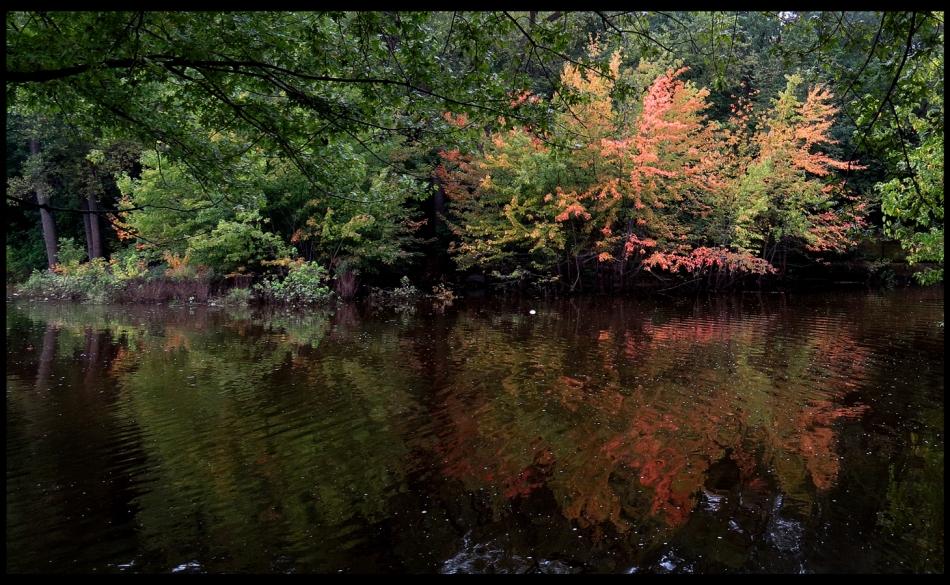 early-autumn-c-fr-mtpmcg090716-sm-2271